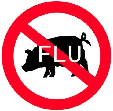 Flu Babi H1N1